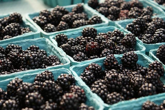 Stock Up on Fresh Produce at Marini Produce