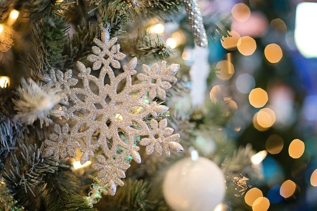 Don't Miss A Longwood Christmas at Longwood Gardens